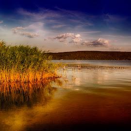 by Yordanka Trifonova - Landscapes Beaches