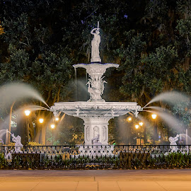 Forsyth Fountain by Robert Sellers - Buildings & Architecture Statues & Monuments ( savannah, water, park, fountain, georgia, travel, ga )