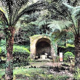 by José António Duarte Moura - Nature Up Close Gardens & Produce