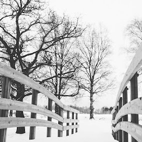by Issam Shaheen - Instagram & Mobile Other ( photographers, sweden, uppsalastad, loves_sweden, sverige, photographer, uppsala, scandinavian )