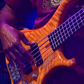 Playing The Notes ! by Marco Bertamé - Artistic Objects Musical Instruments ( hand, purple, electric, string, brown, guitar, knob, curves )
