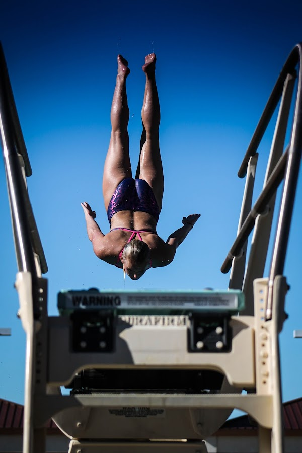 Diver by Jay Woolwine Photography - Sports & Fitness Swimming ( diver, swim, dive, swim meet, action, diving, swimming, swimmer )