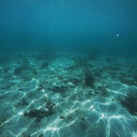Blue by NI Sha - Landscapes Underwater ( blue, underwater, dark, weather, rain )