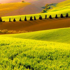 Marche landscapes by Mauro Fini - Landscapes Mountains & Hills ( marche )