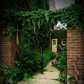by Shawnee Hoffman - City,  Street & Park  Neighborhoods