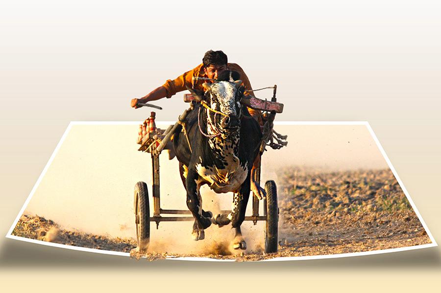 C2 by Abdul Rehman - Digital Art People ( beautiful, mother nature, beauty, iphoneography, natural light, pakistan, iphone,  )