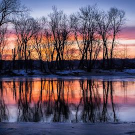 Colorful Sunrise Reflection On Mississippi River by Dave Sheffield - Landscapes Sunsets & Sunrises ( colorful sunrise, iowa sunrise, sunrise reflection, island sunrise reflection, quad cities sunrise, mississippi river sunrise )