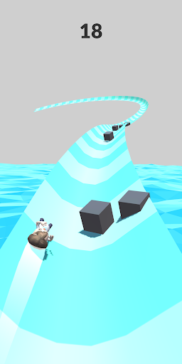 Waterpark Slide.io For PC