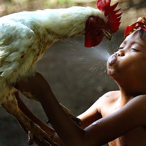 my chicken by Irawan Sudjana - Babies & Children Children Candids