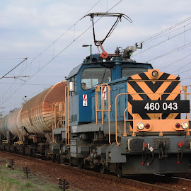 460-043 by Nagy Attila - Transportation Trains ( 123 )