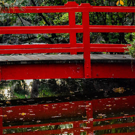 ...red bridge... by Angeline JoVan - Novices Only Objects & Still Life