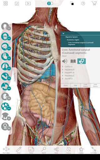 Free Download Human Anatomy Atlas 7-Springer APK