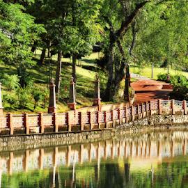 Seremban Lake Garden by Steven De Siow - City,  Street & Park  City Parks ( seremban, lake garden, city park, seremban lake garden, park,  )