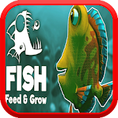 Feed The fish & Grow