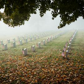 Foggy Morning by John Edwin May - City,  Street & Park  Cemeteries ( hero, graves, tennessee veterans' cemetery, american flag, gravestone )