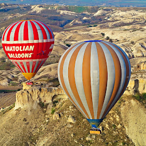 Hot Air Balloons by Roni Terisno - Transportation Other