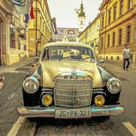by Jasminka  Tomasevic - Transportation Automobiles