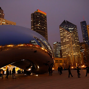 Cloud Gate by Gerard Pascazio - Buildings & Architecture Statues & Monuments (  )