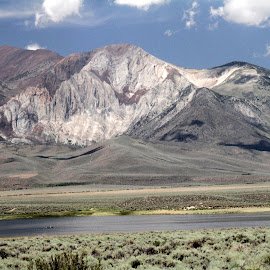 Inlet from Crowley Lake by Stephanie Salinsky - Landscapes Waterscapes ( desert, crowley lake, eastern sierra, no  people, inlet )