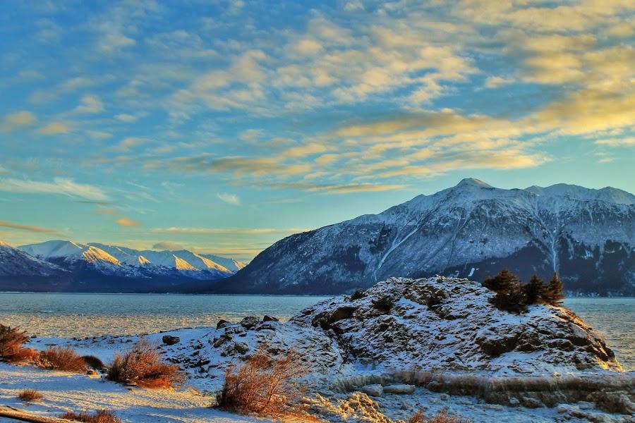 Beluga Point by Patricia Phillips - Landscapes Travel ( alaska beluga-point )