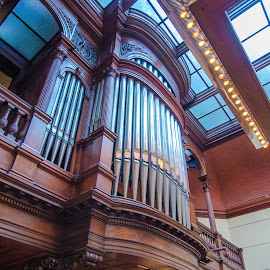 Hill Mansion Pipe Organ by Gary Hanson - Artistic Objects Antiques ( music, hill mansion, pipe organ, pipes, antique, st. paul )