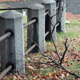Fenced off by Janet Smothers - City,  Street & Park  Cemeteries