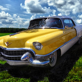Yellow Cadillac by Ana Paula Filipe - Transportation Automobiles ( car, old, cadillac, american, yellow )