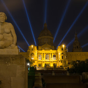Museu Nacional d'Art de Catalunya at night by Bim Bom - Buildings & Architecture Statues & Monuments
