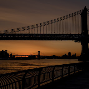 Brooklyn Bridge Sunrise by Logan Knowles - Buildings & Architecture Bridges & Suspended Structures ( brooklyn bridge, silhouette, new york city, nyc, sunrise )