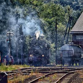 by Marco Bertamé - Transportation Trains (  )