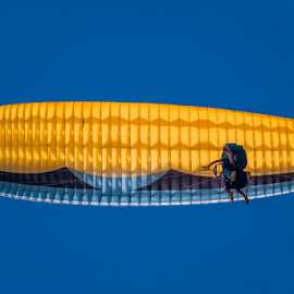 Two in the Sky by Robert Namer - Sports & Fitness Other Sports ( natural light, extreme, prime lens, delta, sports, sport, aerial, yellow, flying, sky, blue sky, nature, blue, skyscape )