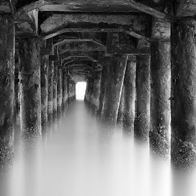 P i e r by Dacel Andes - Landscapes Waterscapes