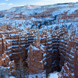 Bryce Canyon formations as the sun goes down by Brent Morris - Landscapes Caves & Formations