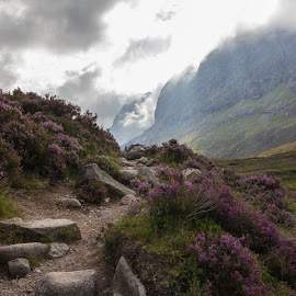 Path to Ben Nevis by Karen Gray - Landscapes Mountains & Hills