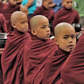 Young monks by Tomasz Budziak - Babies & Children Child Portraits ( myanmar, monks, asia, children, portraits )