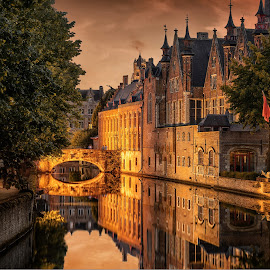 Golden Bruges by Nick Moulds - City,  Street & Park  Street Scenes ( reflection, bruges, belgium, hour, brugge, golden,  )