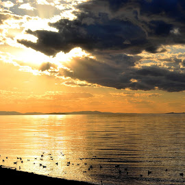 Early evening over the Great Salt Lake by John Pobursky - Landscapes Travel ( utah, sunsets, waterscapes, great_salt_lake, antelope_island )