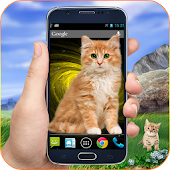 Free Download Cat on screen Cute Magic Touch Phone Prank APK for Samsung