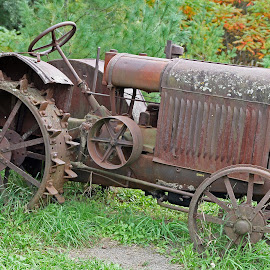 Old Tractor by Eva Pastor - Transportation Other ( farm equipment, rust, tractor )