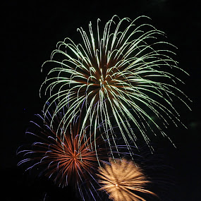 by Liz Huddleston - Abstract Fire & Fireworks ( cellebration, colors, summer, fireworks, july, night,  )