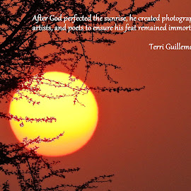 the Sunrise quote by Pradeep Kumar - Typography Captioned Photos