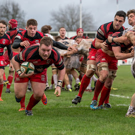 In the corner for the try! by Dan Bellenger - Sports & Fitness Rugby ( maul, hooker, try time, sport photography, rugby )