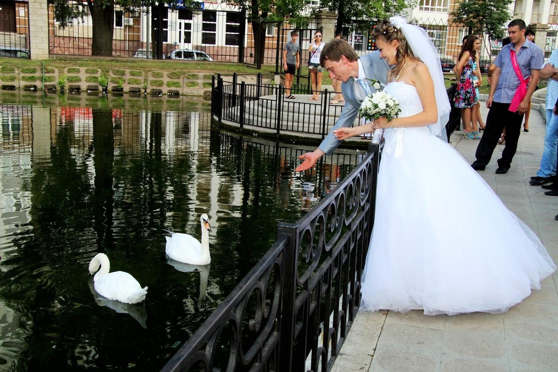 Место для свадьбы уфа
