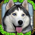Stray Dog Simulator