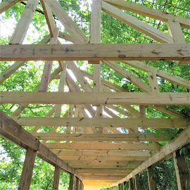 Trusses by Hal Gonzales - Buildings & Architecture Architectural Detail ( cover, wooden, squares, lines, angle )
