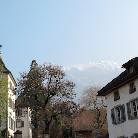 g10_2010041704916 by Serguei Ouklonski - City,  Street & Park  Historic Districts ( home, old, mountain, street, no person, travel, house, architecture, alpine, city, mountains, sky, tree, no people, mountain peak, switzerland, alp, hill, building, scenic, graubunden, roof, urban, building exterior, window, outdoors, town, day, high, built structure, streetview architecture )