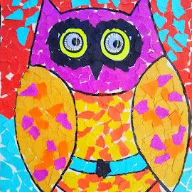 OWl by Vijay Govender - Drawing All Drawing