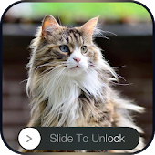 Kitty Slider lock screen APK for Bluestacks