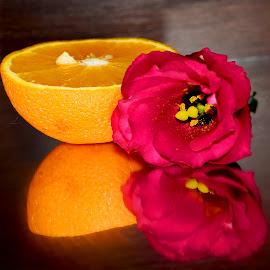 orange with the flower by LADOCKi Elvira - Food & Drink Fruits & Vegetables