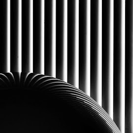 OLYMPUS DIGITAL CAMERA by Tomislav Zebic - Abstract Patterns